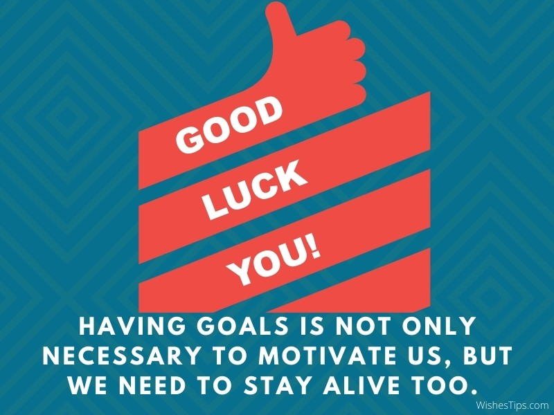 Having goals is not only necessary to motivate us, but we need to stay alive too.